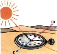 Определение сторон света по Солнцу и часам